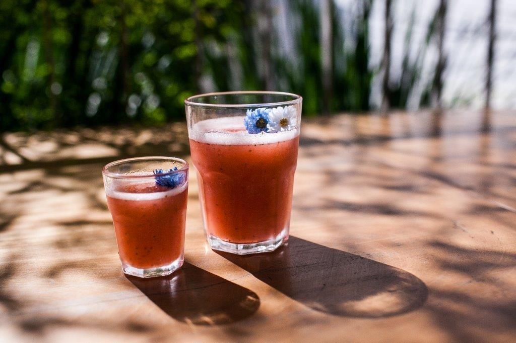 A Dri Dri apresenta drinques com sorbet (foto: divulgação)