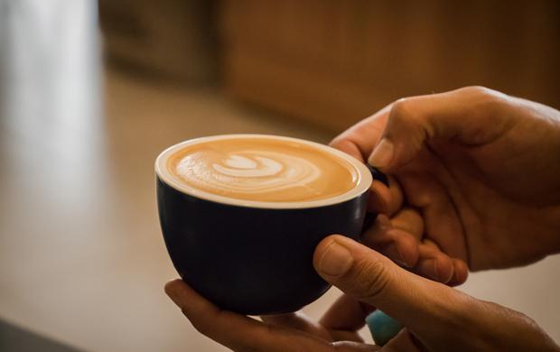 Os melhores cafés estão nos pequenos lotes