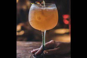 Aprenda a preparar o drinque Ginger Fresh. Foto: Divulgação