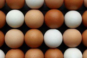 A empresa diz ser a primeira da indústria de ovos a oferecer caixas reutilizáveis (Foto: Reprodução/iStock)